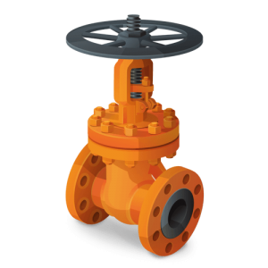 hastelloy c22 valves